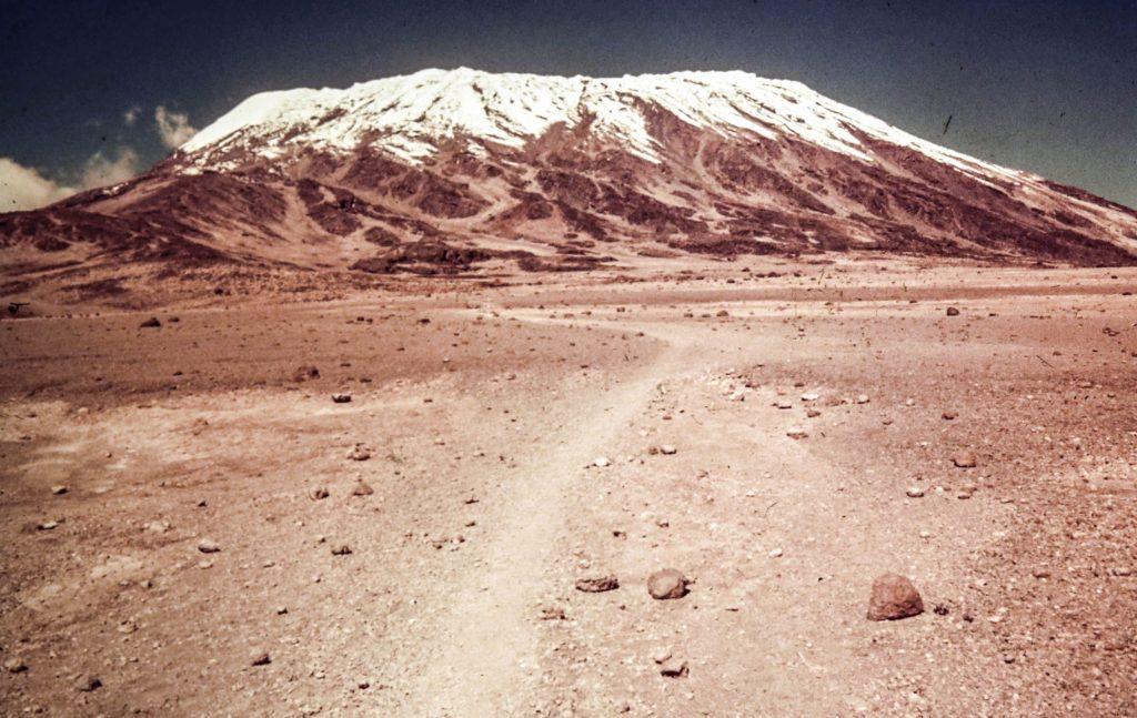Kilimanjaro climb day 2.