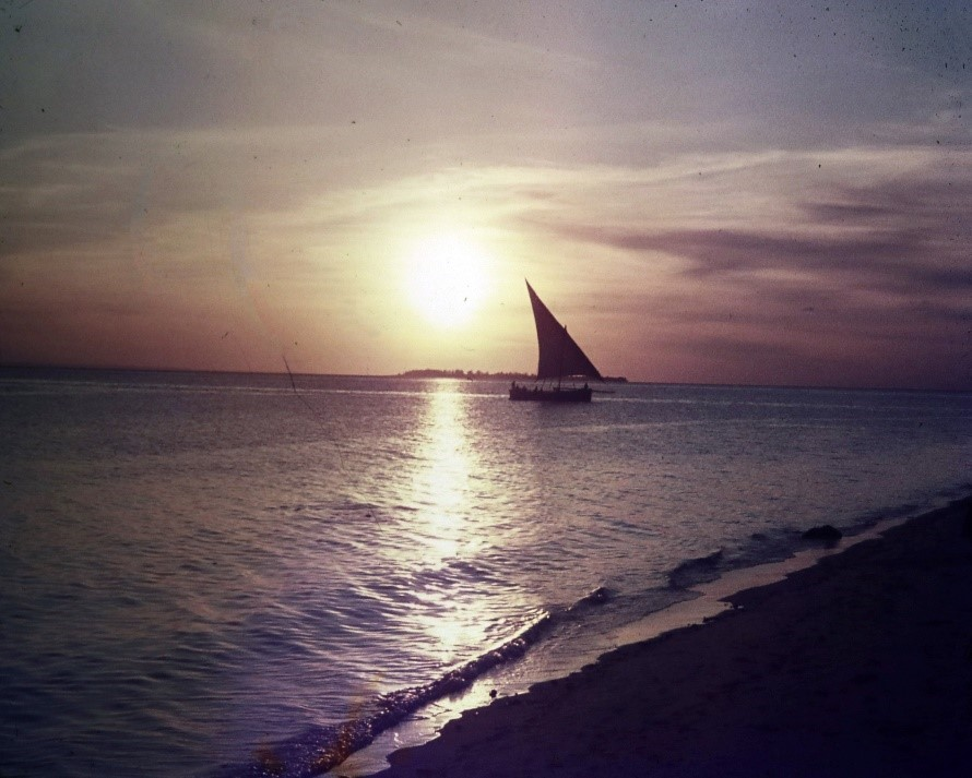 An African fishing boat with sails at sunset in Zanzibar